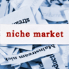 Moving from a Do Everything to a Niche Business Model